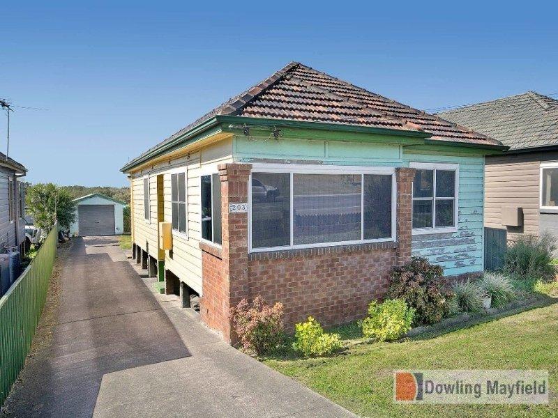 203 Maitland Road, Sandgate, NSW 2304