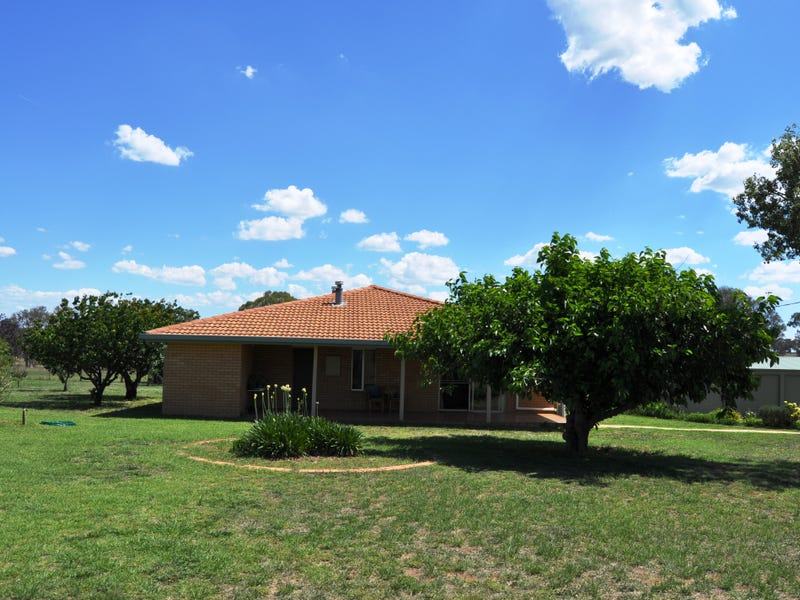 343 Puggoon Road, Beryl, NSW 2852