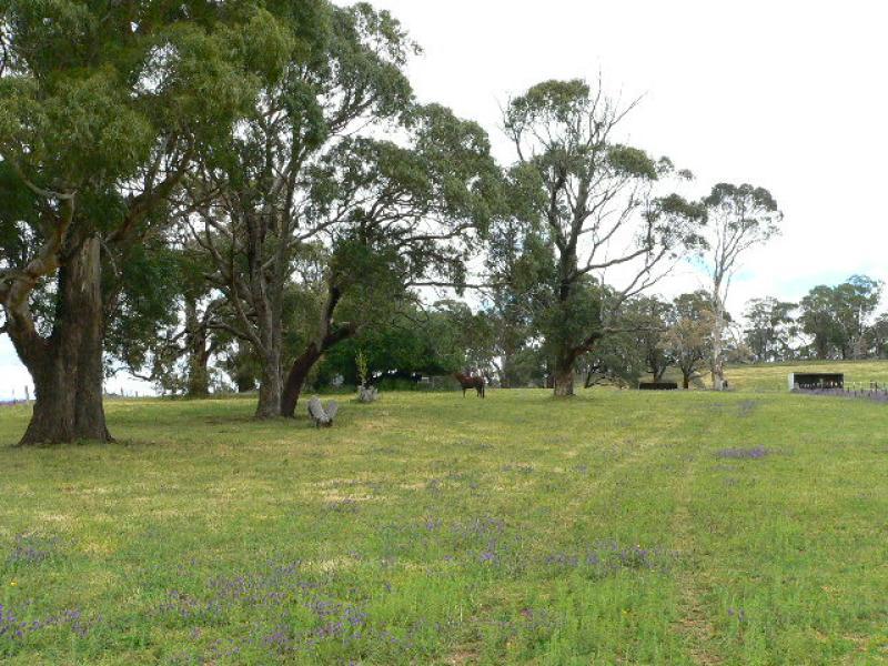 Lot342 Ovington Lane, Forest Reefs, NSW 2798