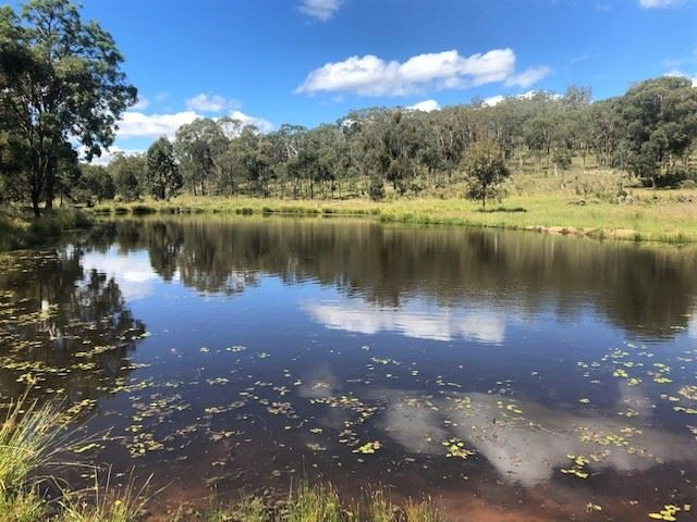 266 Gum Gully Road Mebul, Gulgong, NSW 2852