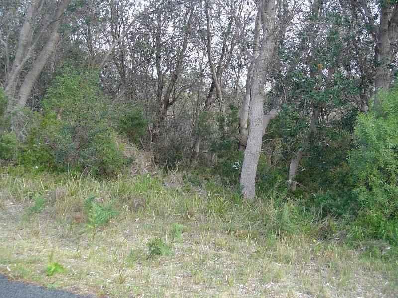 1359 Shoreline Drive, Glomar Beach, Vic 3851