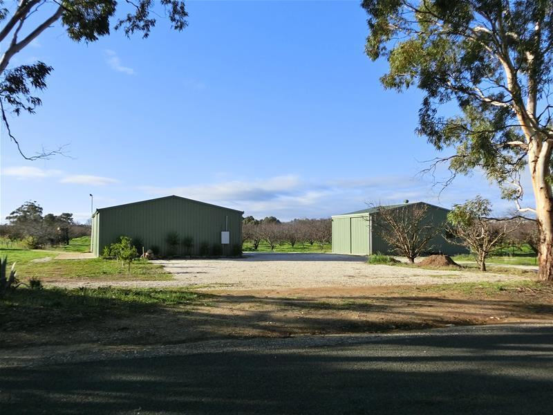 Lot /320 Willows Road, Light Pass, SA 5355