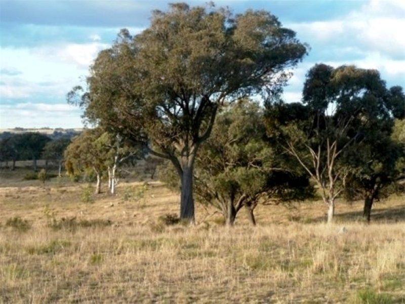 Lot 3, 2903 Burrendong Way 'Picnic Park', Kerrs Creek, NSW 2800