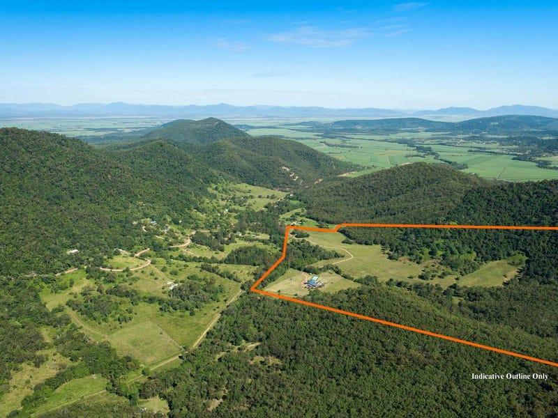 205 Brandy Creek Road, Brandy Creek, Qld 4800