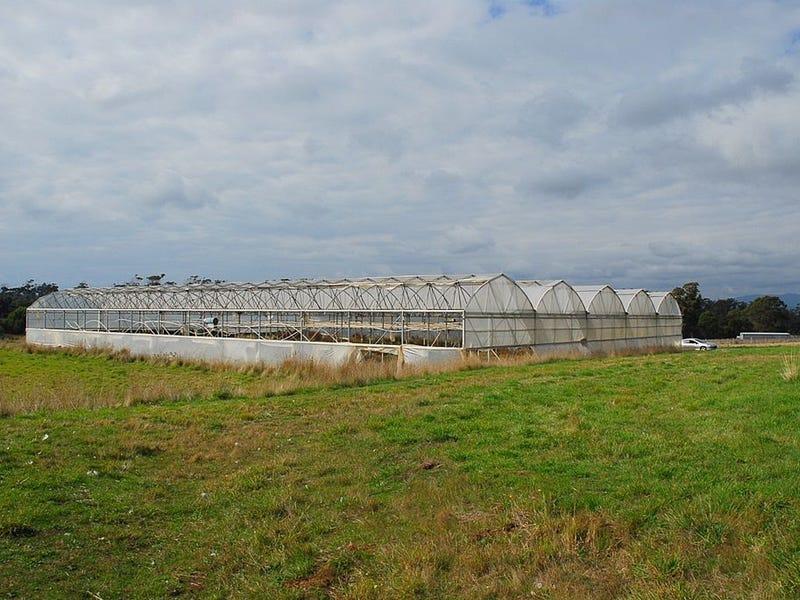 199 Bakers Lane, Northdown, Tas 7307