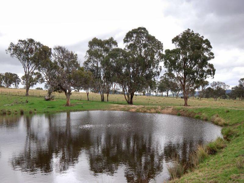 4454 Oxley Hwy, Bendemeer, NSW 2355