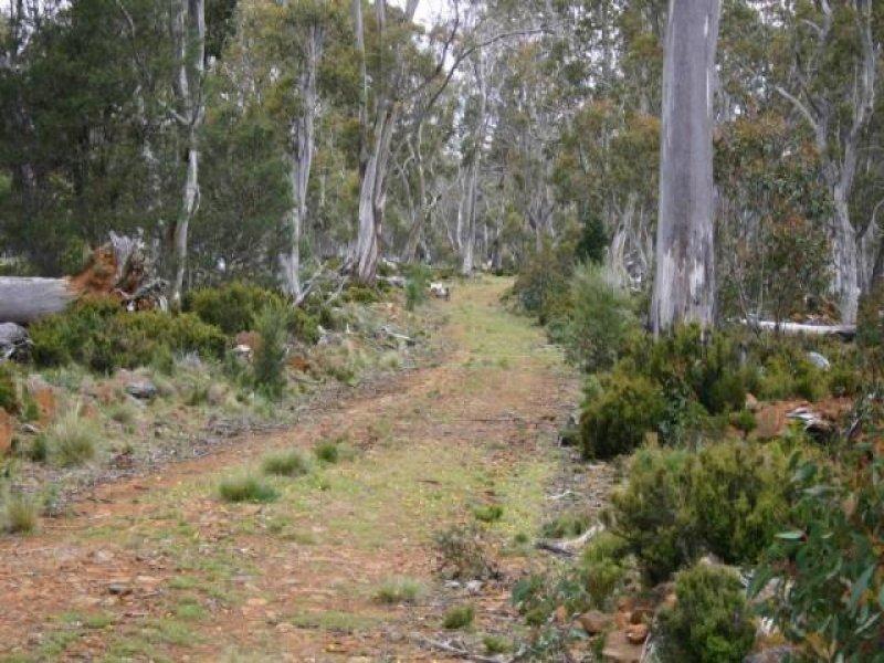 - Black Snake Road, Bothwell, Tas 7030