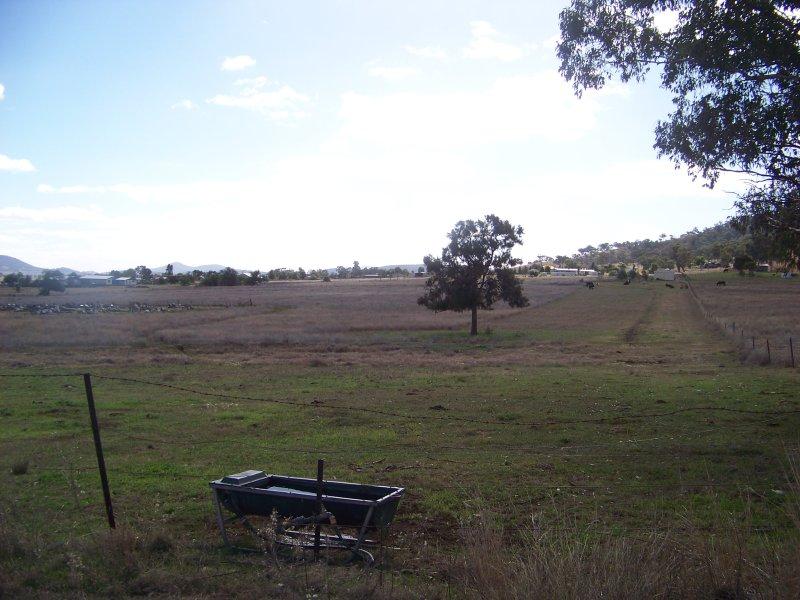 Lot 242, Memorial Drive, Werris Creek, NSW 2341
