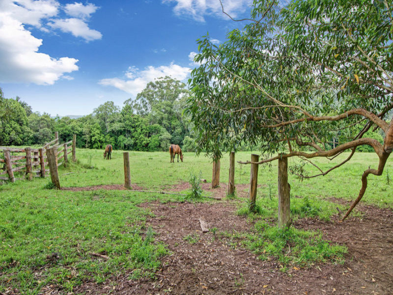 402 Martinsville Road, Martinsville, NSW 2265