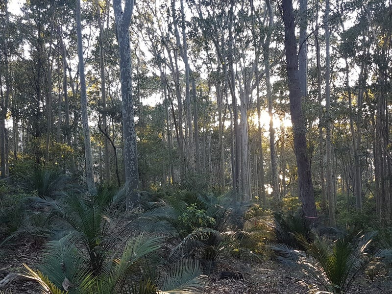 3488 Tathra Bermagui Road, Barragga Bay, NSW 2546