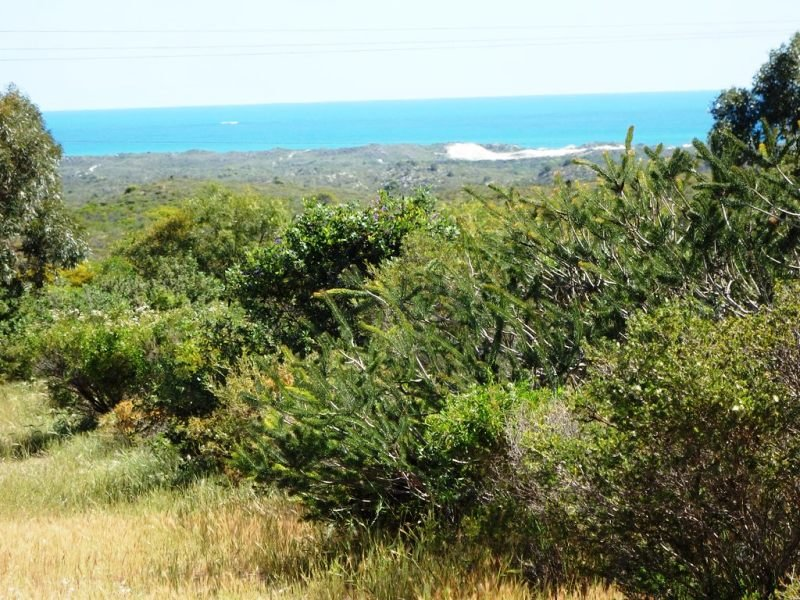 20 The Lookout, Lancelin, WA 6044