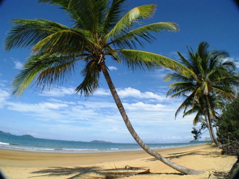 Address available on request, Wongaling Beach, Qld 4852