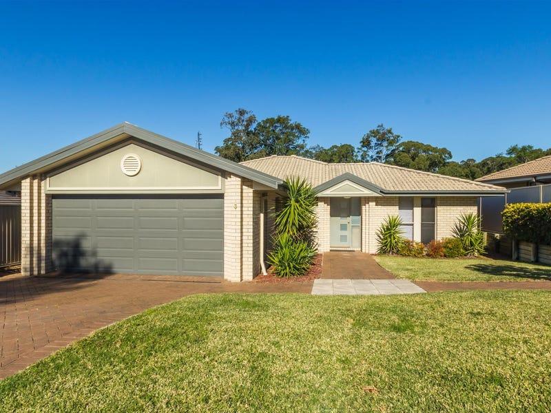 3 Bellbird Close, Fletcher, NSW 2287