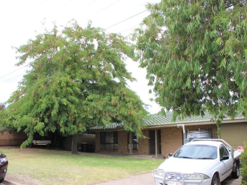 6 Vivien Avenue, Newton, SA 5074