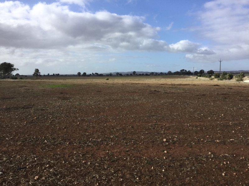 Lot 534 Sturt Highway, Shea-Oak Log, SA 5371