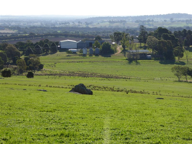 665 Yankee Crossing Road, Henty, NSW 2658
