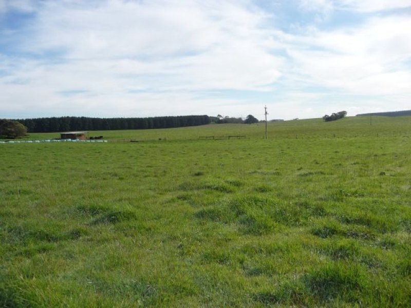 Lot 2 and 3 Nelson Road, Caveton, Mount Gambier, SA 5290