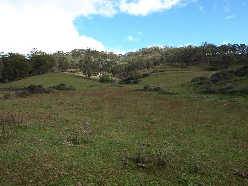 OAKENVILLE CREEK ROAD, Nundle, NSW 2340