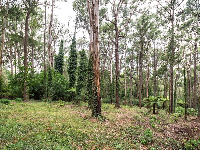 15 Olinda Creek Road, Kalorama, Vic 3766