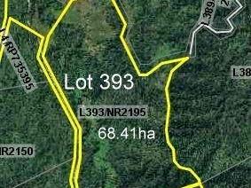 Lot 393, Lot 393 Granadilla Road, Granadilla, Qld 4855