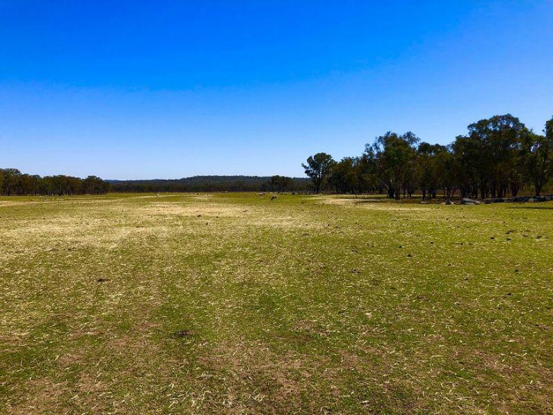 1339 Grove Road, Bassendean, NSW 2365