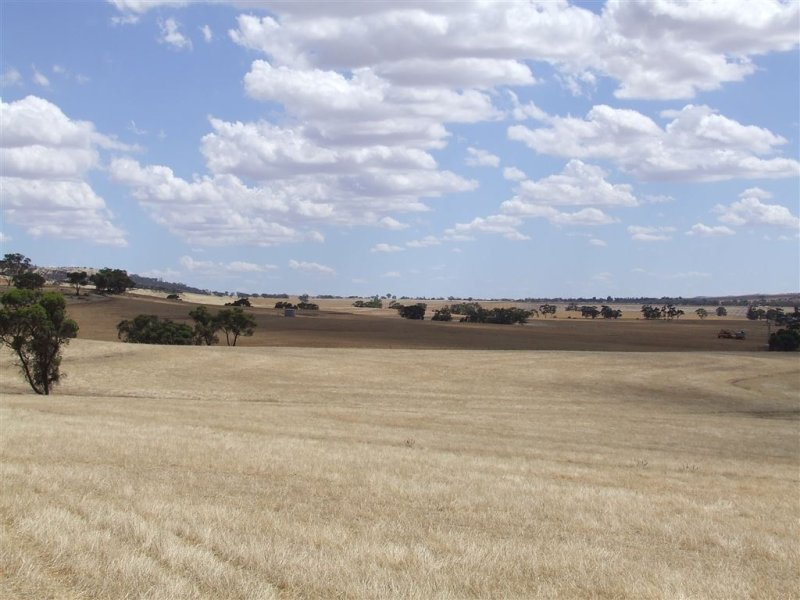 Address available on request, Tarcowie, SA 5431