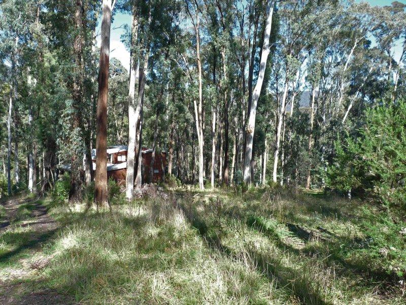 7 Man Court, Sawmill Settlement, Vic 3723