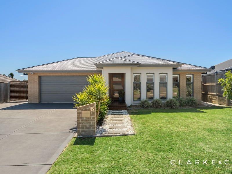 6 Coriander Street, Chisholm, NSW 2322