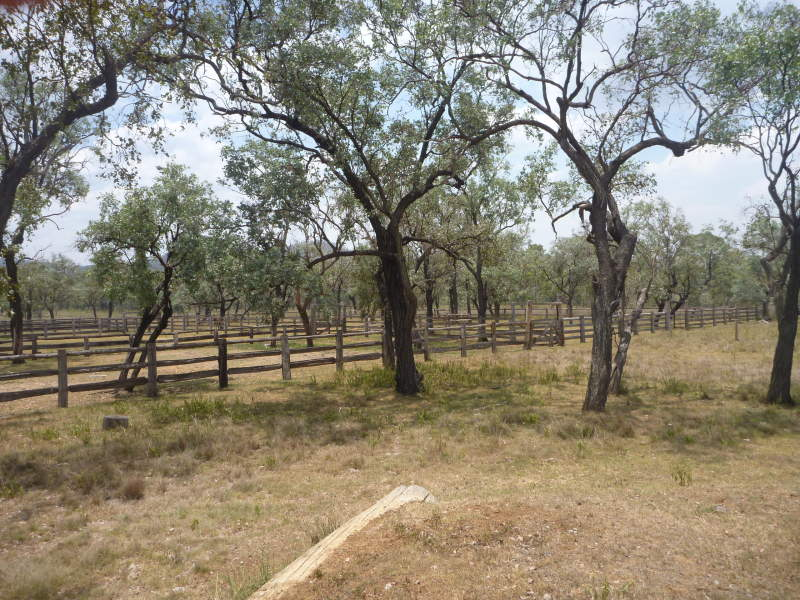 Address available on request, Cania, Qld 4630