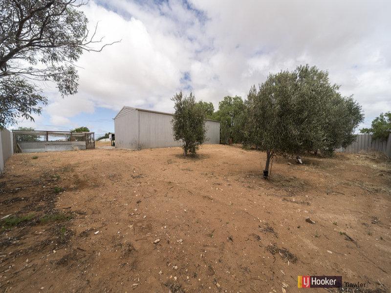 128 Lorne Road, Wild Horse Plains, SA 5501