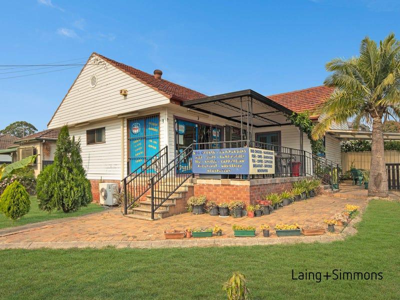 113 Ballandella Road, Toongabbie, NSW 2146