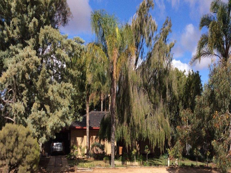29 Richardson Street, Walpeup, Vic 3507