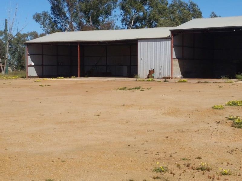 746 Brand Mudge Rd EGANU via, Coorow, WA 6515
