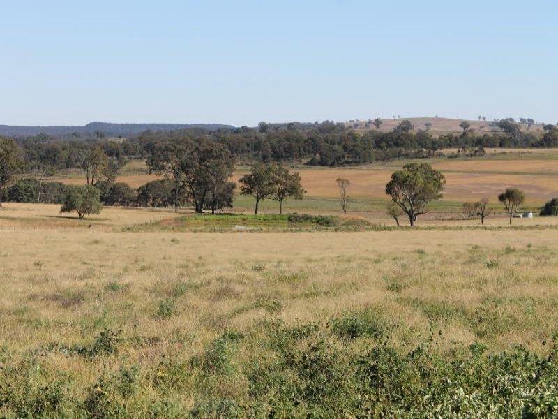 'Kensington' Moorefield Rd, Dunedoo, NSW 2844