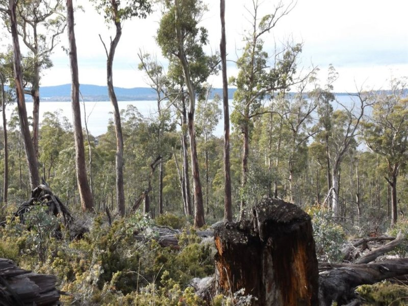 Poatina Road, Arthurs Lake, Tas 7030