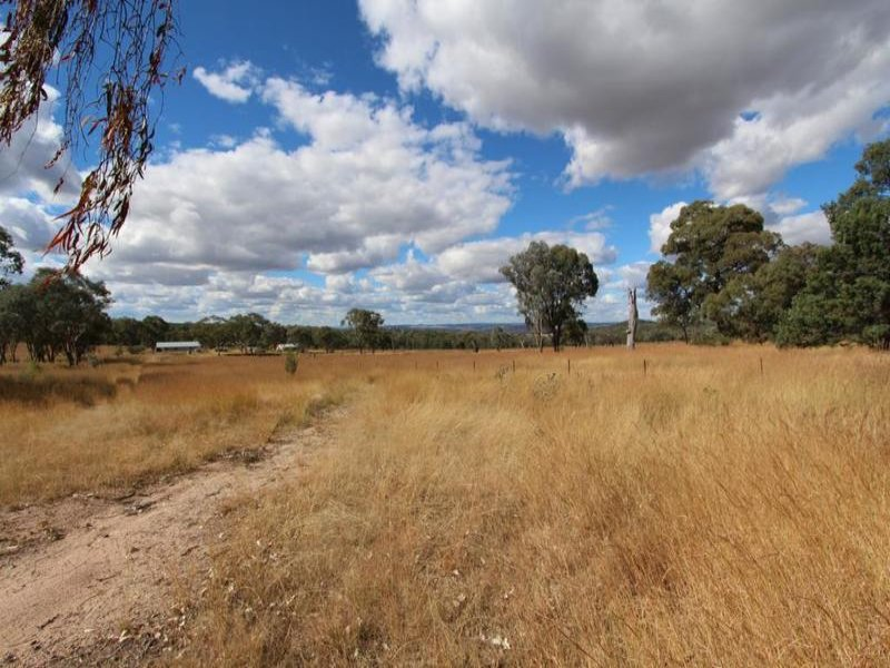 729 Wallangra Road, Ashford, NSW 2361
