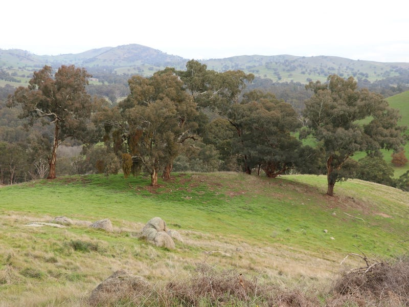 571 Molesworth Dropmore Road, Molesworth, Vic 3718