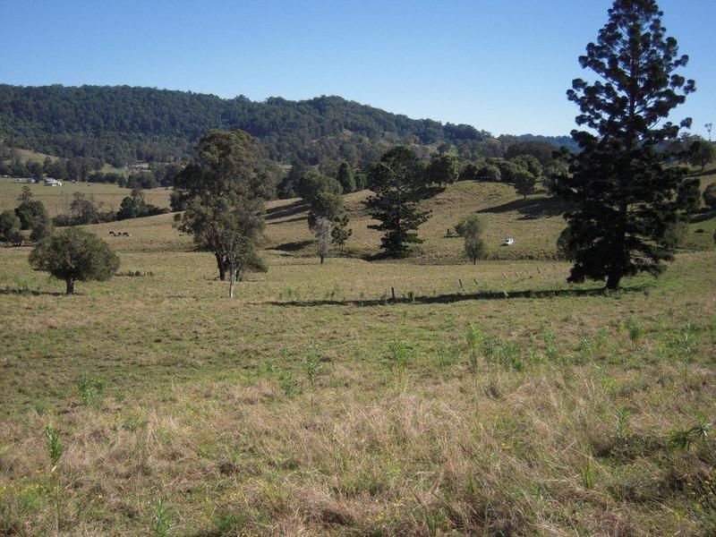 700 Jiggi Road, Jiggi, NSW 2480
