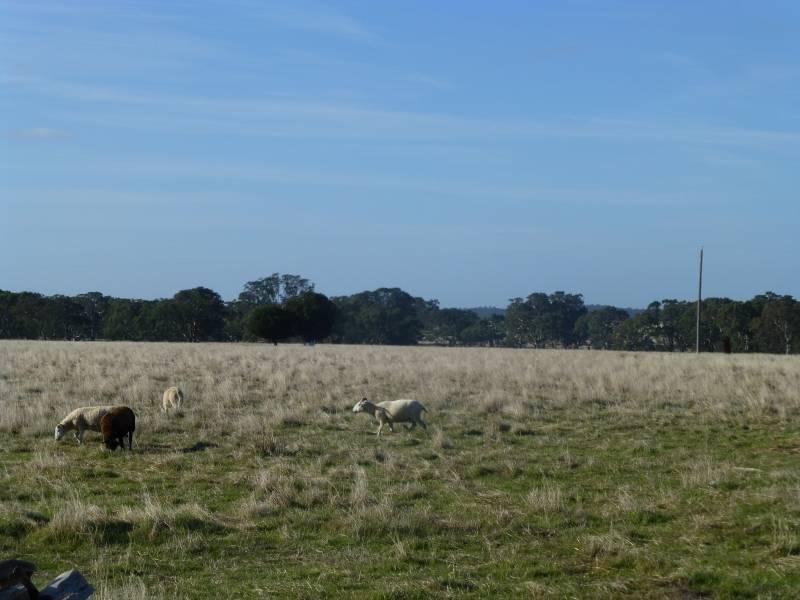 CA 15 & 39 Stud Farm  Road, Evansford, Vic 3371