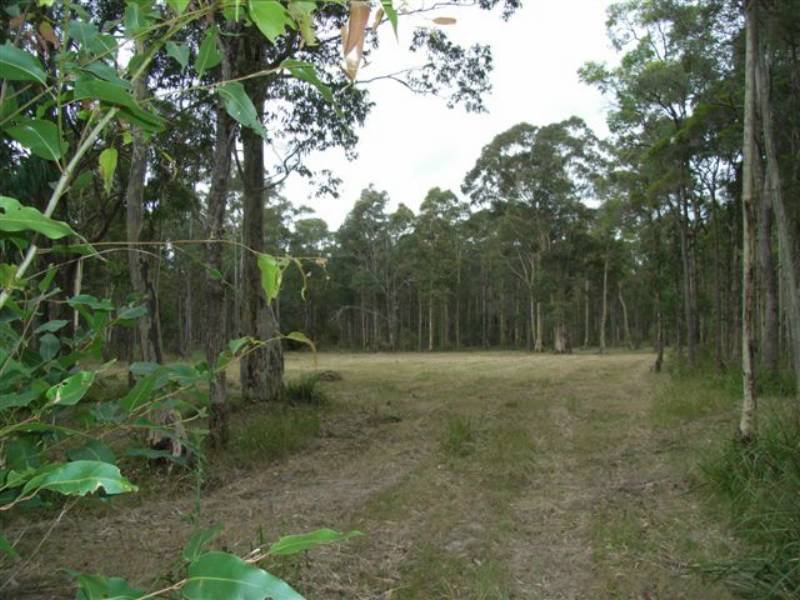 Lot 106 Burralee Drive, Worrigee, NSW 2540