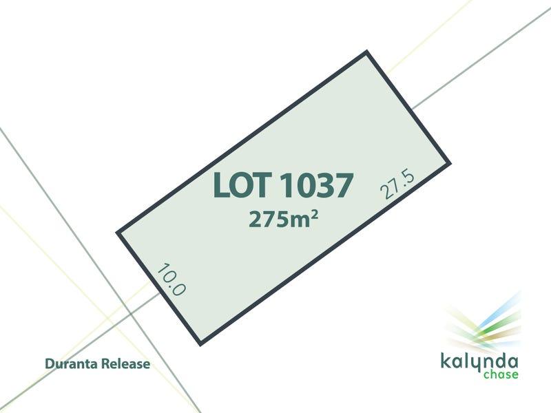 Lot 1037 Ficus Court, Bohle Plains, Qld 4817