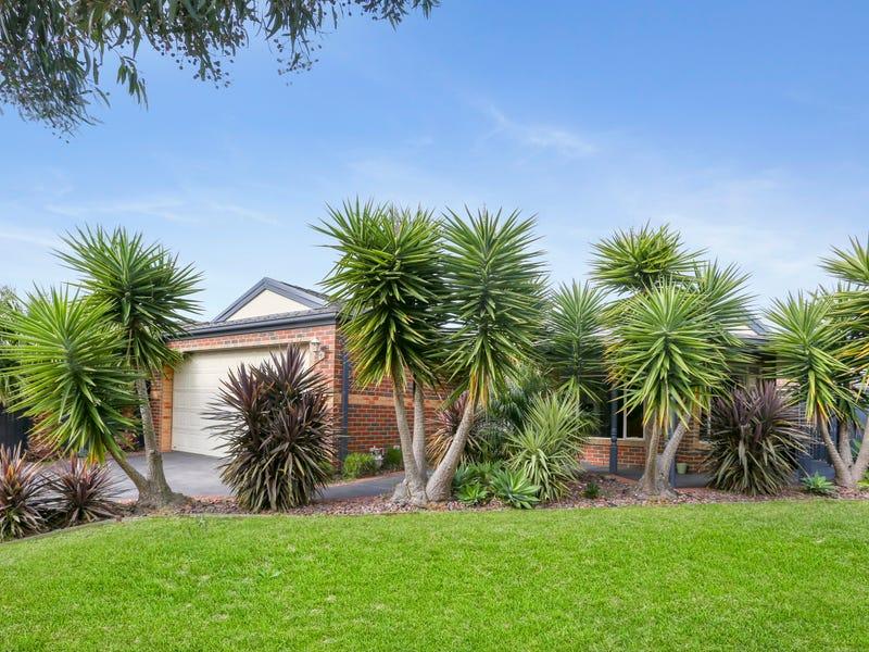 8 Mangrove Court, Aspendale Gardens, Vic 3195