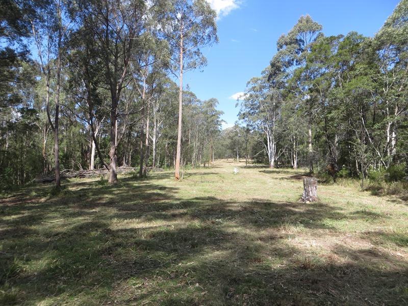 Lots 45,62, 63 Baxters Ridge Trail, Nowendoc, NSW 2354