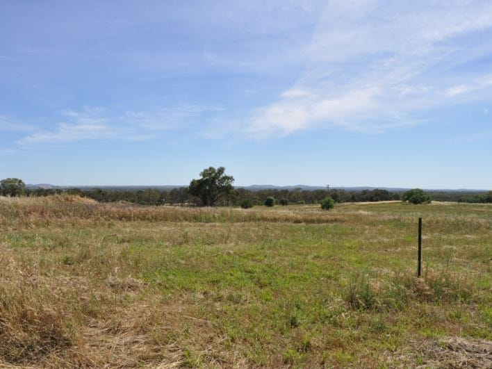 154 Black Lead Lane, Gulgong, NSW 2852