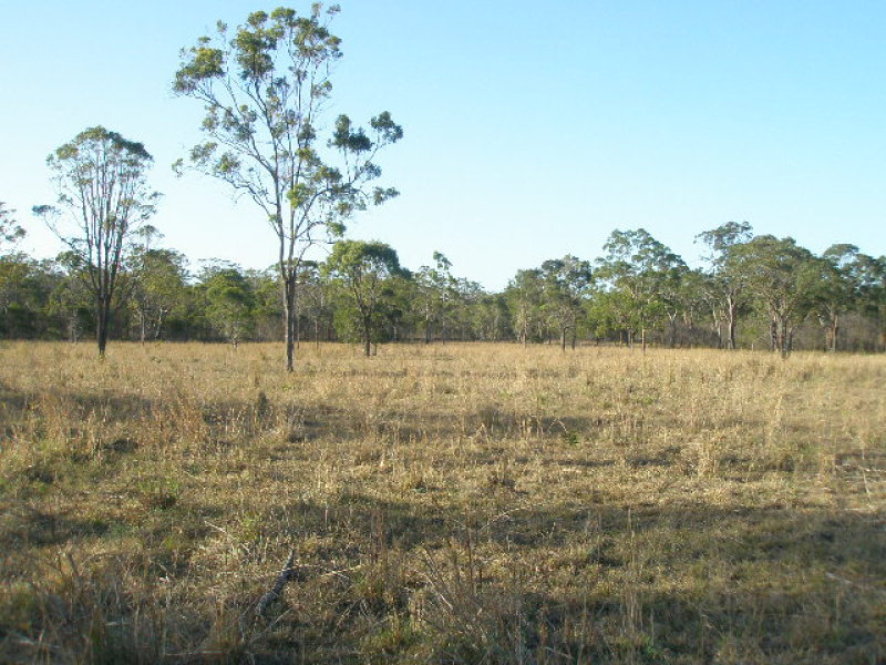 Lot 220 TOOGOOM ROAD, Burgowan, Qld 4659