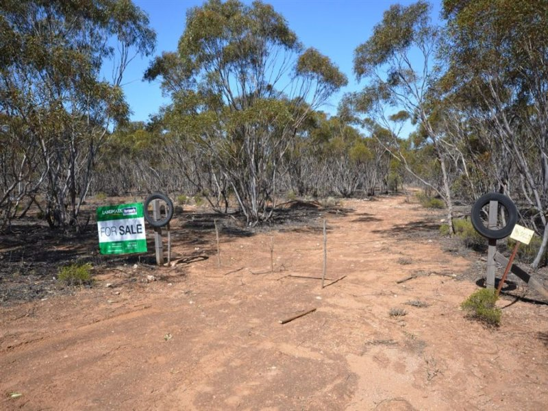 Lot 5 Tumbella Road, Sedan, SA 5353
