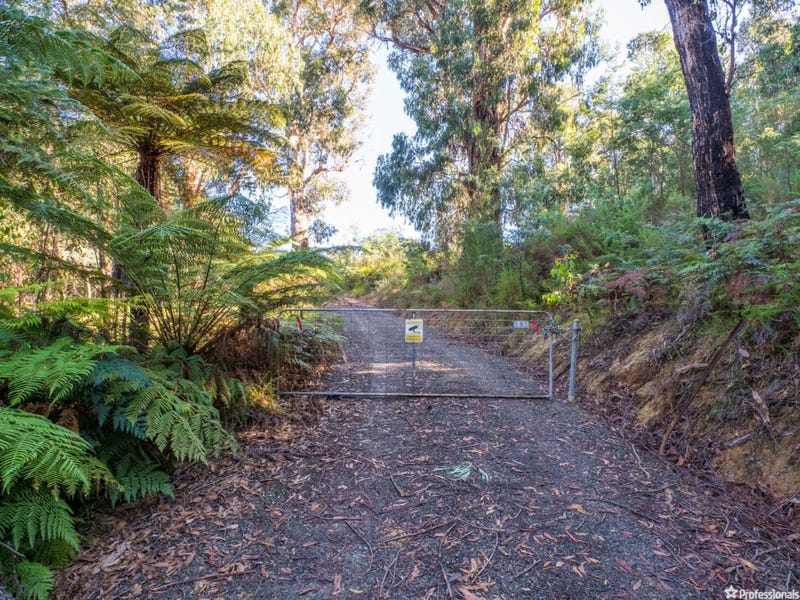 121 The Eagles Nest Road, Marysville, Vic 3779