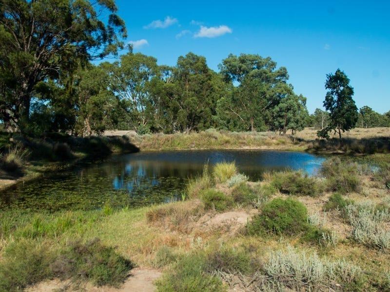3094 Mosquito Creek Road, Mosquito Creek, Qld 4387