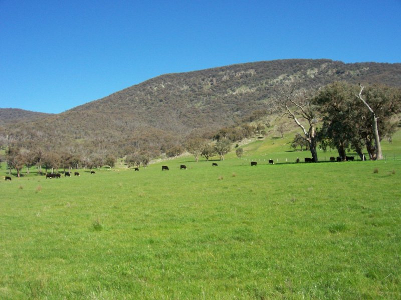 1586 (Lot 9) Kiewa Valley Highway, Kiewa, Vic 3691