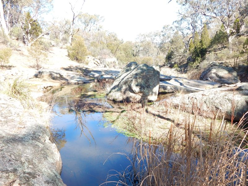 Lot 6 Brassey Creek Fire Trail, Bungarby, NSW 2630